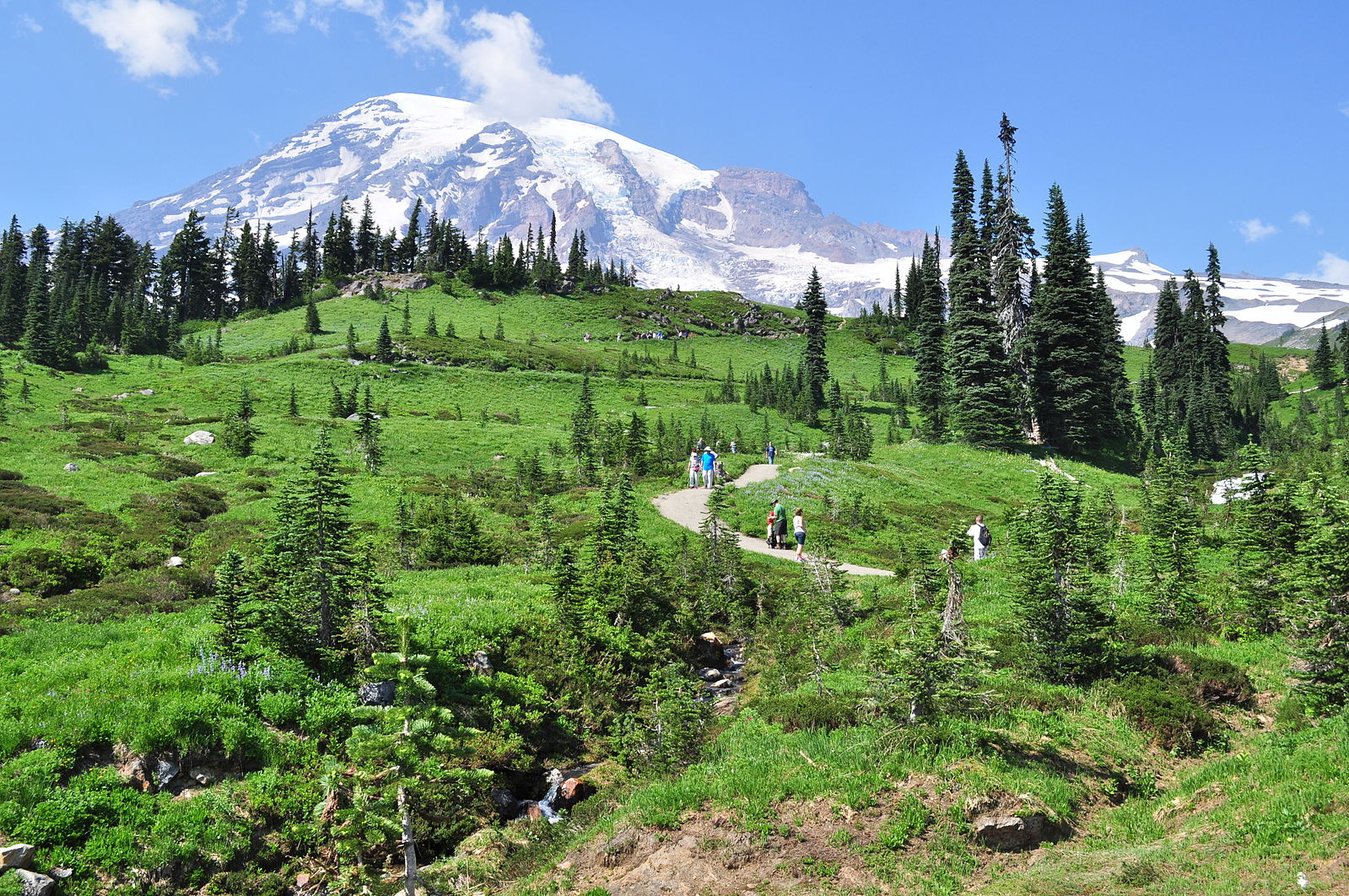 Picture of Mount Rainier